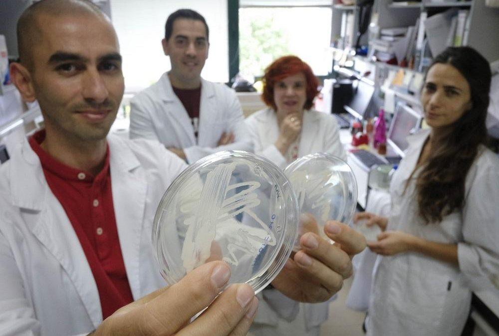 Bacterias vivas para nutrir a la reina de la primavera