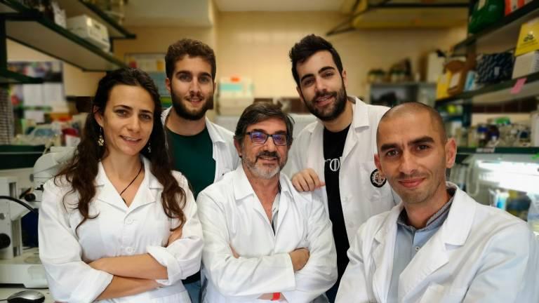Investigadores salmantinos descubren una especie de bacteria con potencial agrícola y farmacéutico