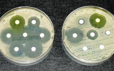 Superbacterias: un peligro real, presente y futuro